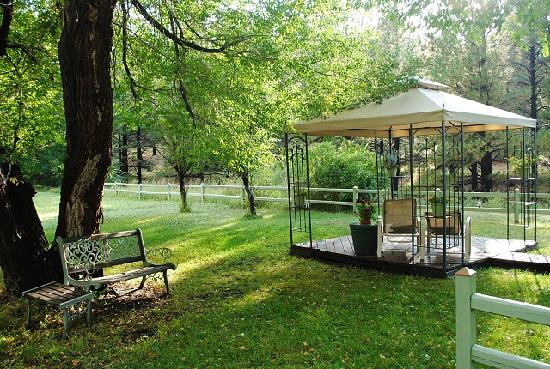 Conifer House Inn : Conifer House - backyard sitting area. A quiet & soothing retreat