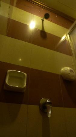 Classique Hotel: The bathroom
