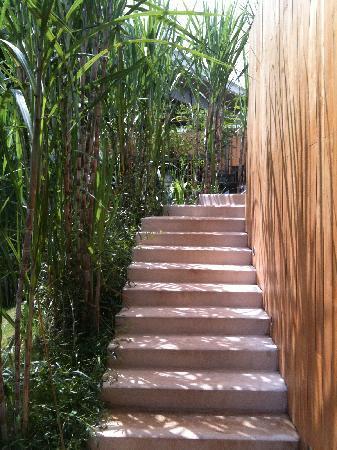 ศาลาเขาใหญ่ รีสอร์ท: Stairs to restaurant/lobby