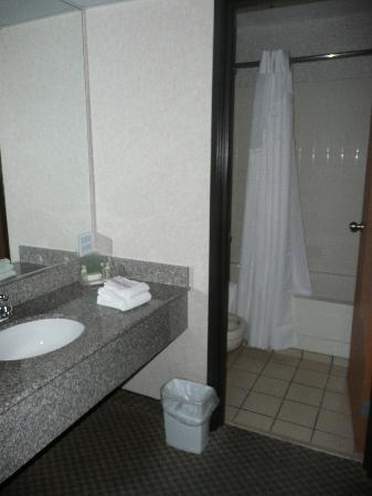 Ramada Kent Seattle Area : The Bathroom and Vanity area