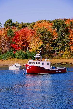 Kennebunkport, ME: Fall color