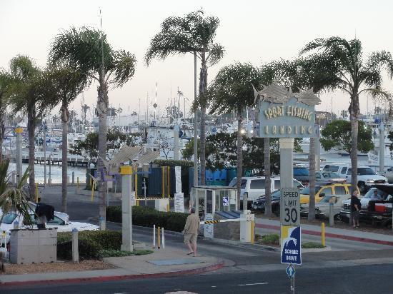 Dolphin Motel: Sport Fishing Landing