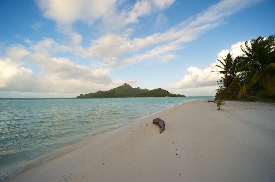 Maupiti Island, Polinesia Francesa: La plage côté intérieur, avec vue sur l'île principale