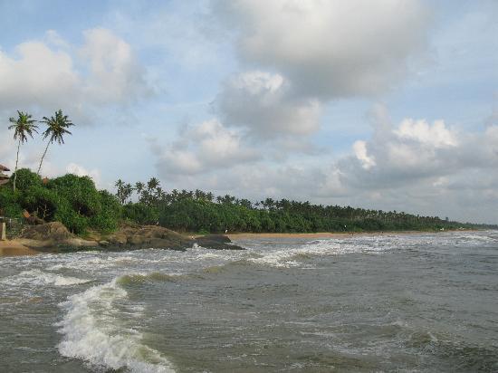 Hotel Susanthas: Local beach