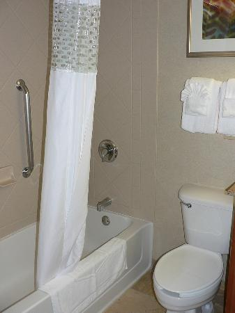 Hampton Inn & Suites Milwaukee Downtown: Bathroom