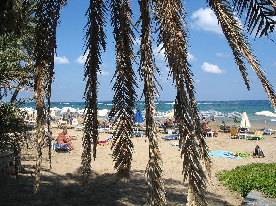 Palm Beach Hotel: Пляж перед отелем