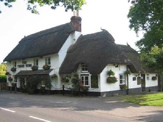 Bransgore, UK: Three Tuns Inn