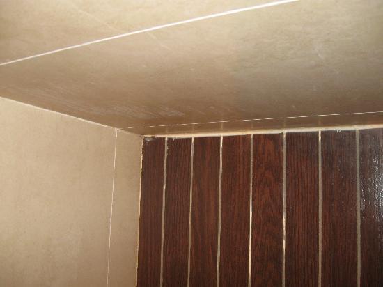 Innesto lavello nei muri foto di savhotel bologna tripadvisor - Muffa nella doccia ...
