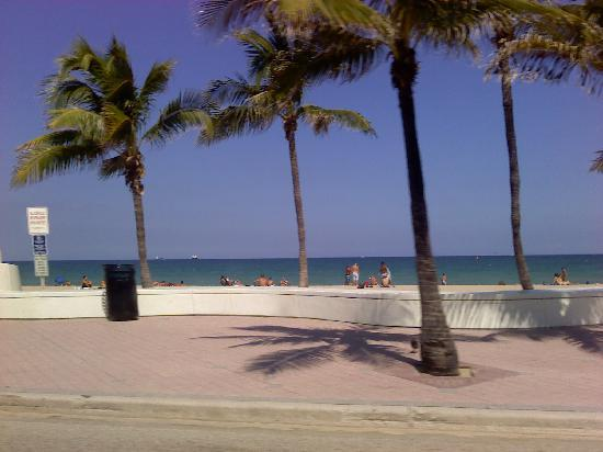 Fort Lauderdale, Flórida: Beach is clean.