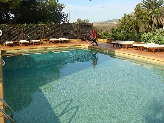 Orange trees picture of hotel villa athena agrigento - Hotels in catania with swimming pool ...
