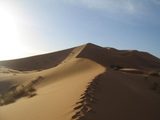 La Maison Rurale: les dunes de merzouga