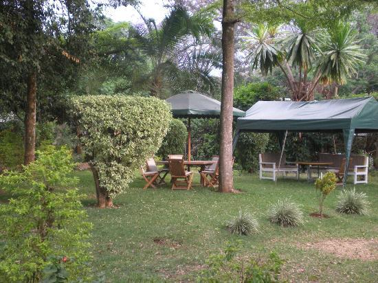 Sandavy Guest House - Kilimani: great place to relax/work