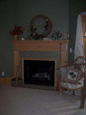 The Inn Around The Corner: Great gas fireplace, on with a switch.