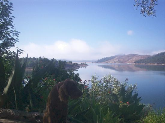 Quinta do Barranco da Estrada: Morning Mist And Pesca