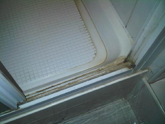 Hayesthorpe Hotel: Gross!