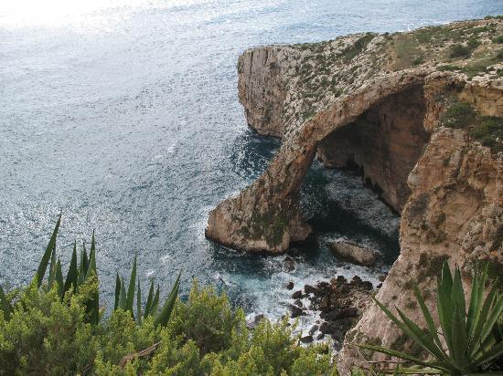 Cornucopia Hotel: Blue Grotto