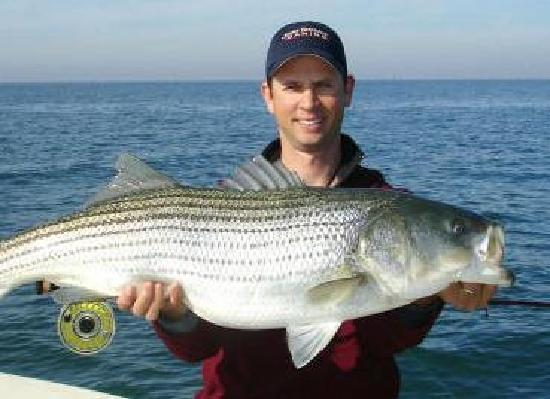 The Inn at Tabbs Creek Waterfront B&B: Fish right off our dock, or let us arrange a charter for larger catches