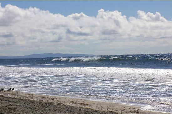 Pelican Cove Inn : carlsbad beach