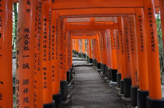 Kyoto, Jepang: Fushimi Inari with its famous Tori gates
