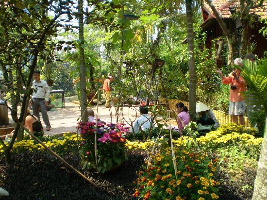 Betel Garden Villas: Betel Garden homestay