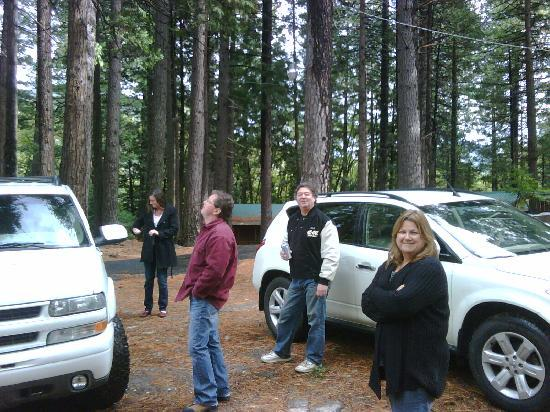 Yuba River Inn: Nature and friends at the cabin