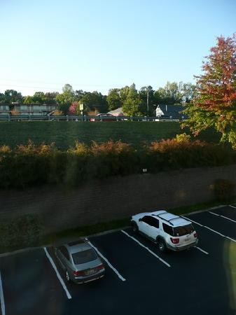 Fairfield Inn & Suites Charlottesville North: Zimmerausblick
