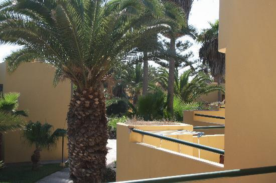 Atlantico Playa Apartments: View from the terrace