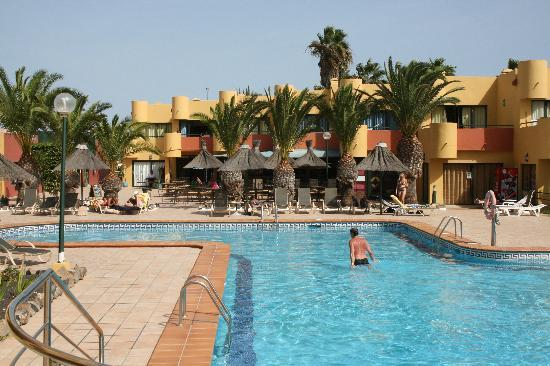 Atlantico Playa Apartments : Pool. Tables behind the palm trees are part of the bar (open till 10pm)