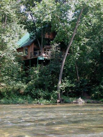 Dora, Missouri: The Tree House