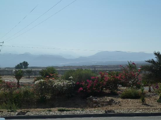 Neot HaKikar, Israel: View from the veranda