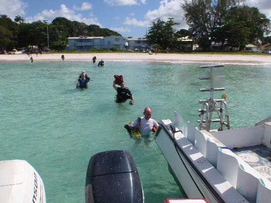 """Dive Barbados : Wading out to the """"Tabio"""""""