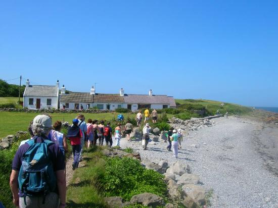 Anglesey Walking Holidays: moelfre on the east coast - anglesey walking festival