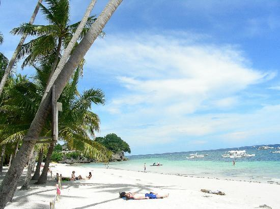 Alona Tropical Beach Resort: Beach front