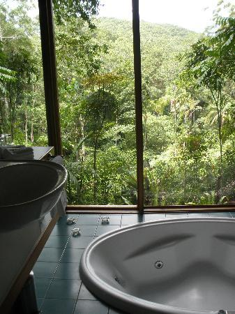 Crystal Creek Rainforest Retreat: View from the bathroom