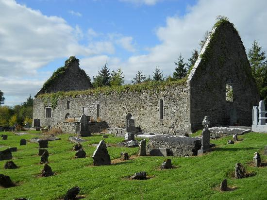 Bunratty Castle Hotel: Church ruins on grounds