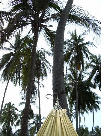Barranquilla, Colombia: Dans mon hamac