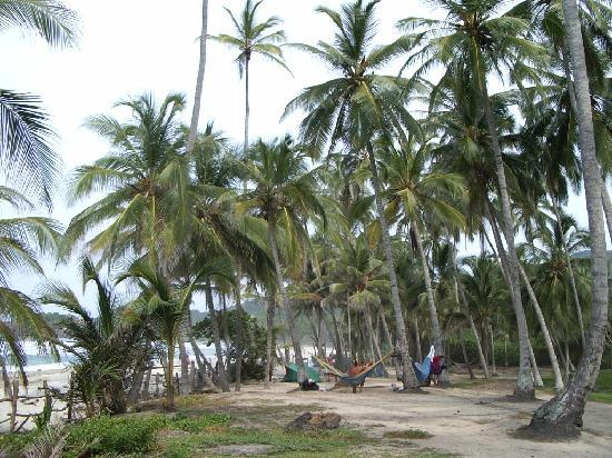 Barranquilla, Colombia: A Tayrona