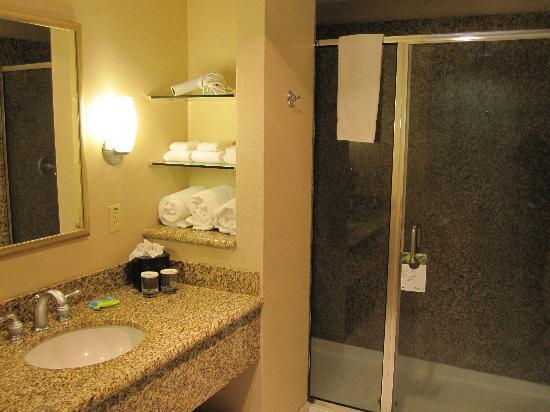 Holiday Inn Pewaukee : Large shower