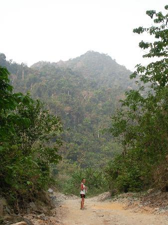 running trail in Vang Vieng