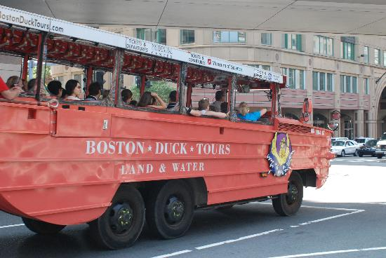 Boston, MA: Les fameux Ducks