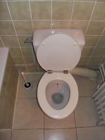 Hôtel Le Richelieu: Traces douteuses dans les toilettes !