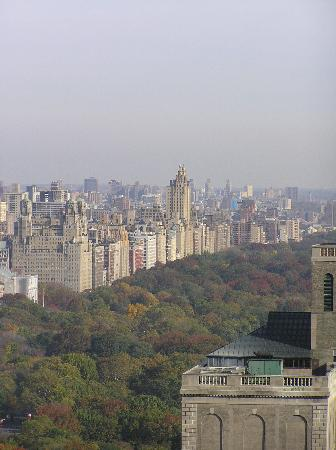 The London NYC: view of central park from 3905