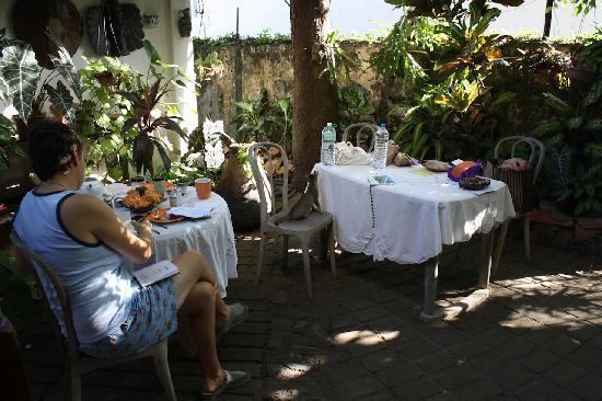Mrs Padmini Nanayakkara's Chelsea Gardens: Garden view at breakfast