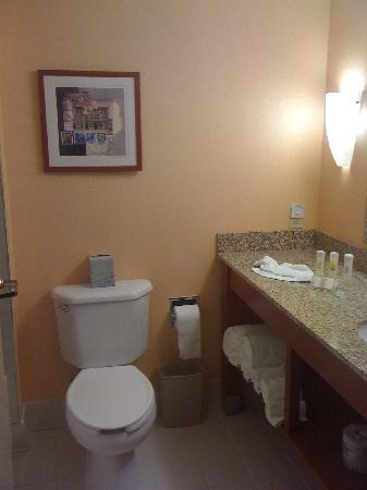 Crowne Plaza Dulles Airport Hotel: Bathroom