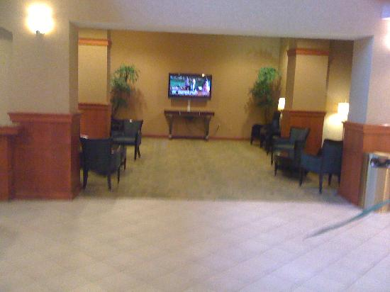 Crowne Plaza Dulles Airport Hotel: TV Room in lobby