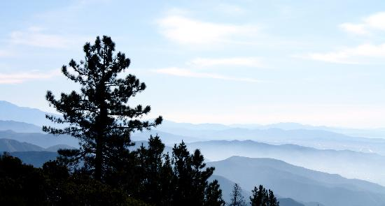 Big Bear Region, Californië: View from the road
