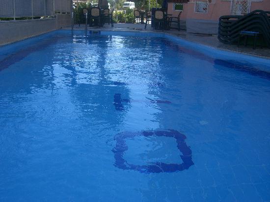 Lotus Hotel: pool