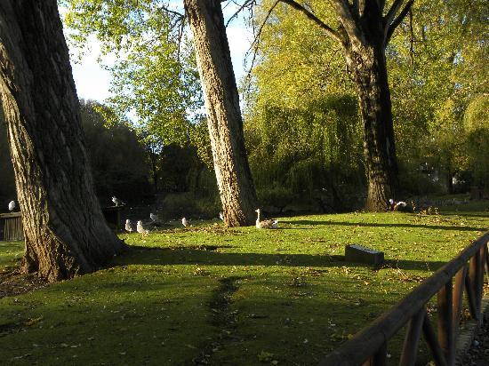Parador de Gijón: Parque que rodea al Parador.