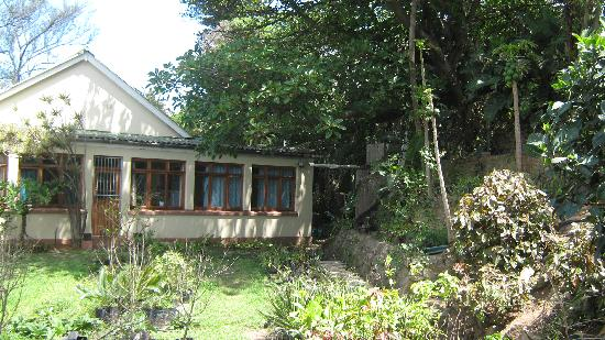 Cape Town, Sydafrika: NUDE B&B SOUTH COAST KZN