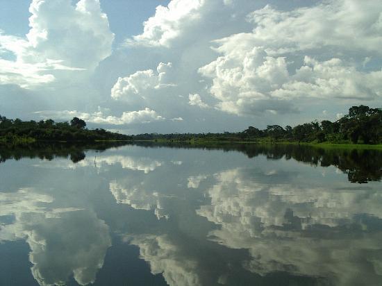 État d'Amazonas : lagoa
